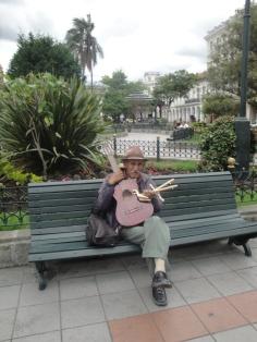 Vendedor de instrumentos musicales